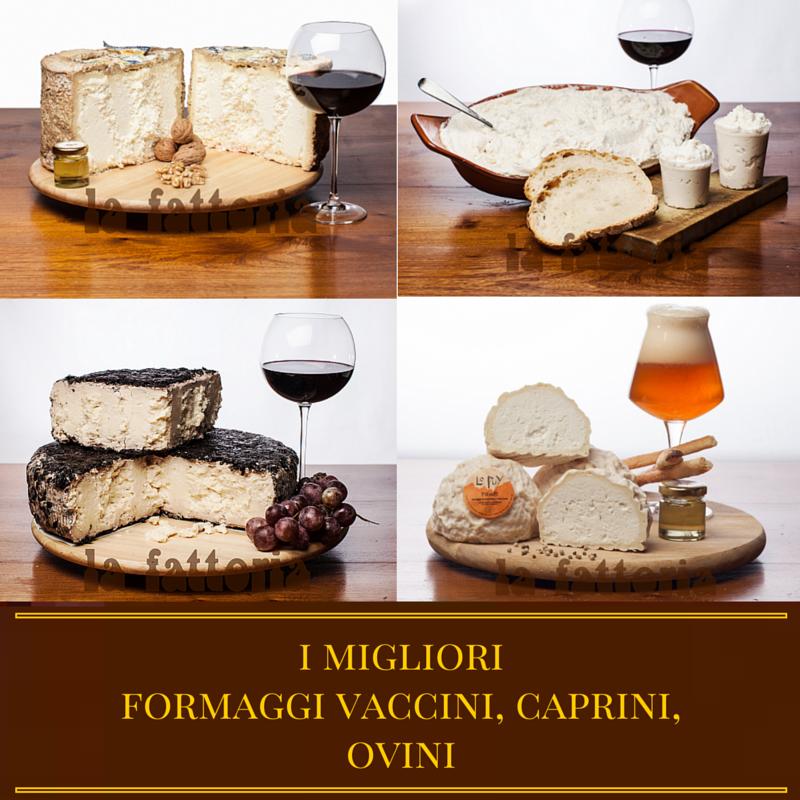 formaggi-la-fattoria-1946-castelmagno-parmigiano-reggiano-brie-raschera-fontina-gorgonzola-cuneo