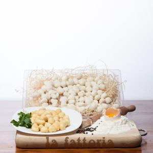 Gnocchi-di-patate-1-kg-la-fattoria-1946