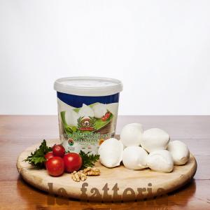 Mozzarella-di-bufala-dop-barattolo-gr-500