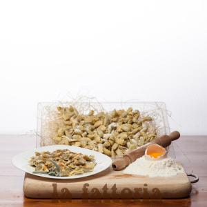 raviolini-del-plin-vegetariani-1-kg-la-fattoria-1946