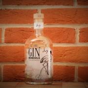 gin-bordiga-la-fattoria-1946