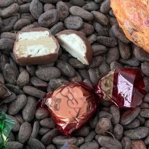 cuneesi-al-rhum-crea-cervasca-cuneo-occelli-lafattoria1946-piemonte-italy-cioccolatini-cuneesi